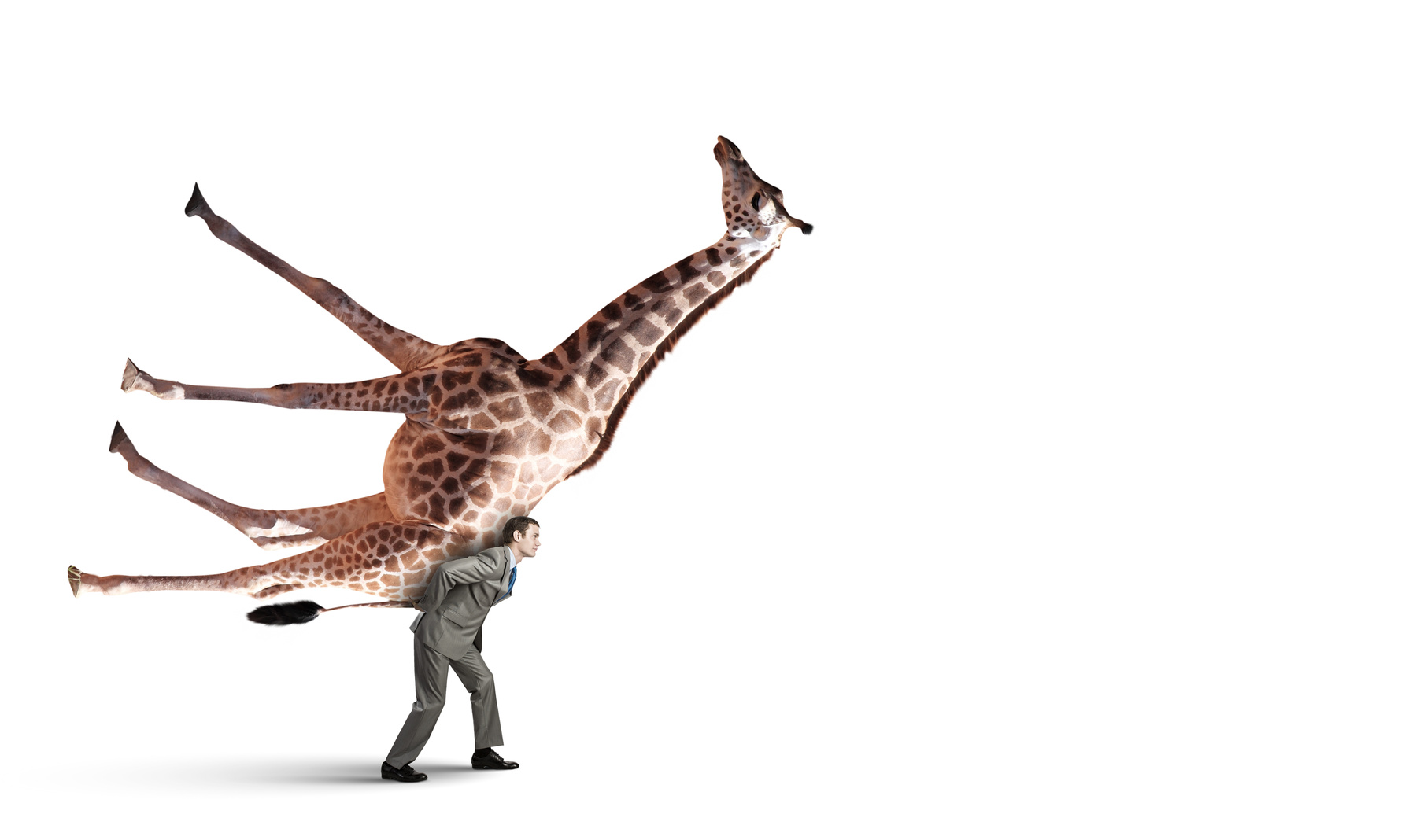 Fotolia_75073929_Mann trägt Giraffe