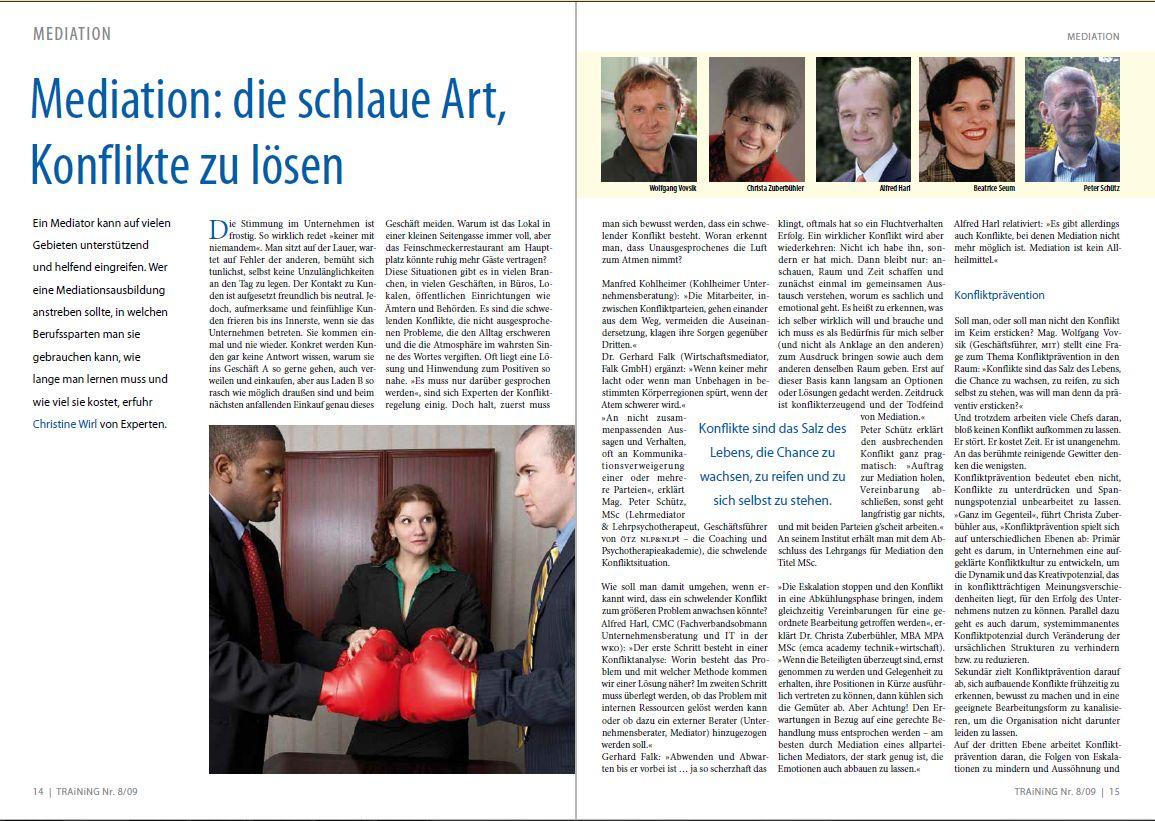 2009_08_Strobach_Training_Mediation die schlaue Art
